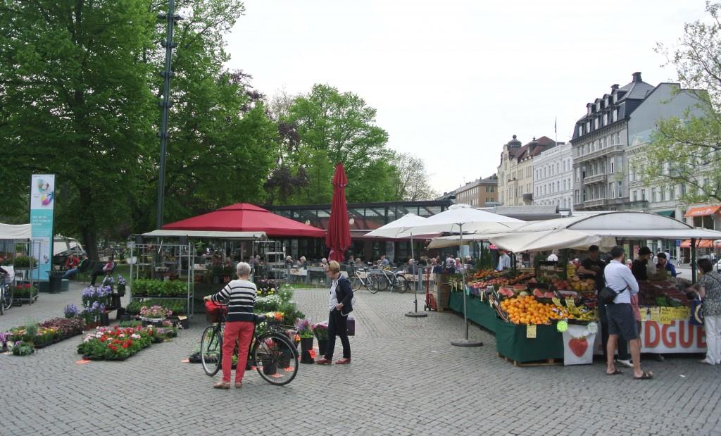 Bild 11 Torgahandel (maj 2013)